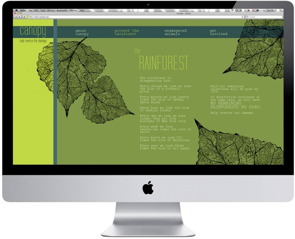 canopy-website